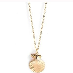 """SeaShell Necklace Gold 18"""" w/ extender"""
